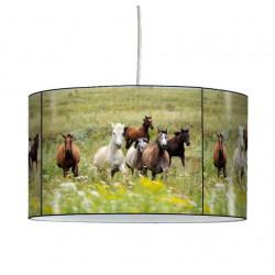 Luminaire cheval