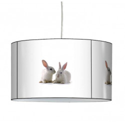 Suspension lapin