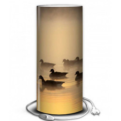 Lampe photo canard sauvage