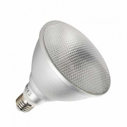Ampoule LED COB PAR38 E27