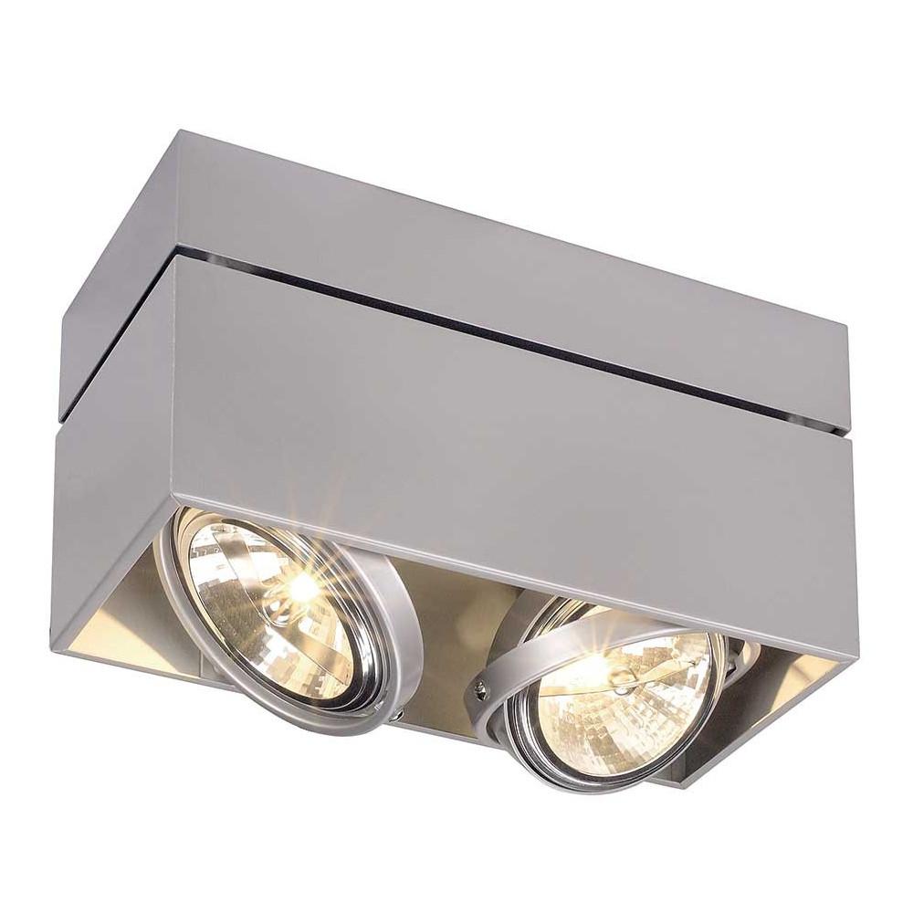 plafonnier double gris argent orientable eclairage vitrine. Black Bedroom Furniture Sets. Home Design Ideas