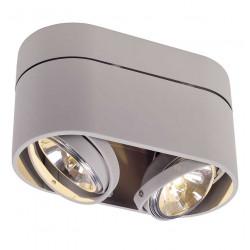 Plafonnier gris 2 spots orientables