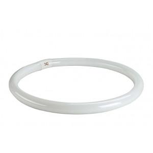 Ampoule 2GX13 T5 ring 40W