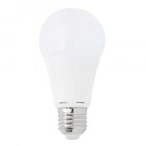 Ampoule LED 10W 2700K