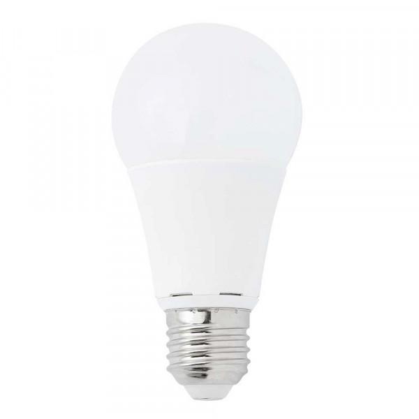 Ampoule LED 10W 5000K